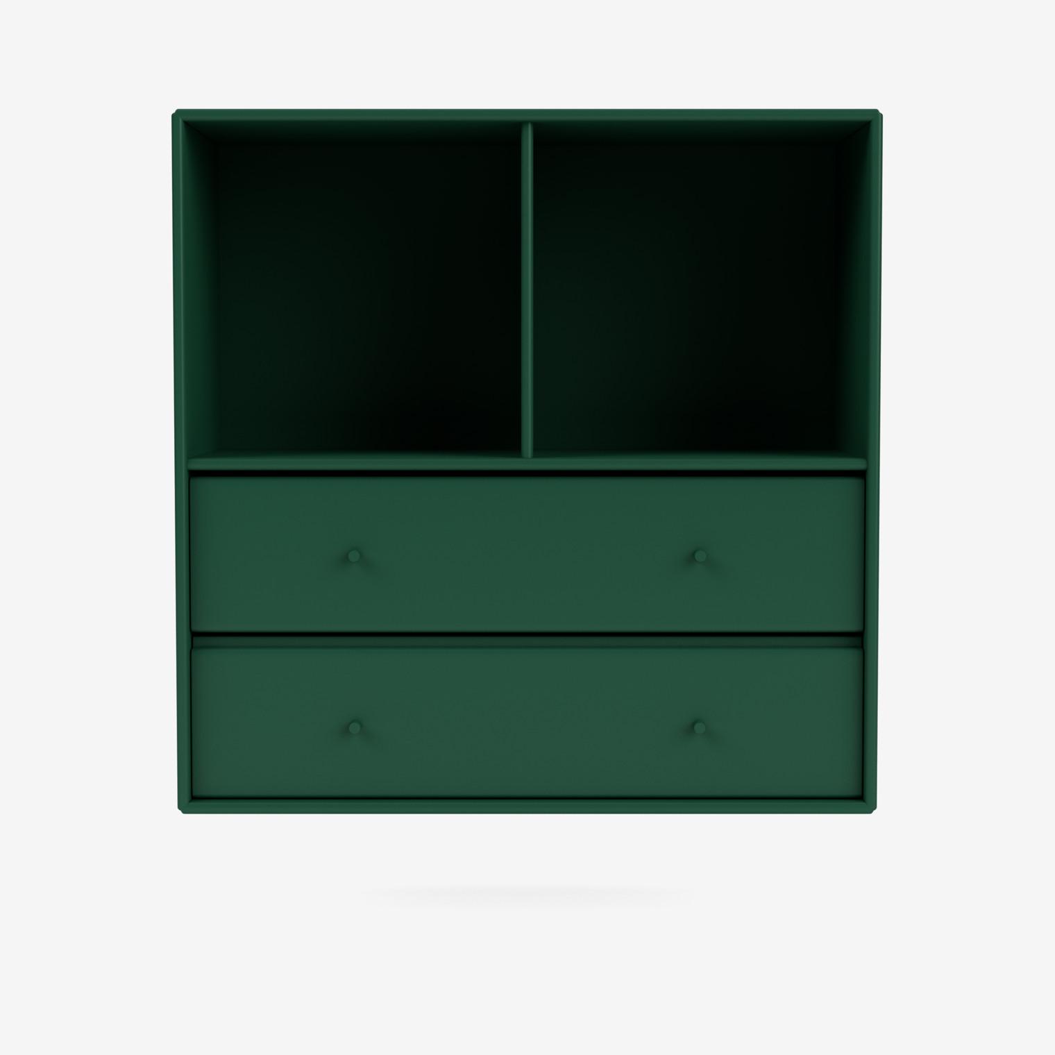 Shelf 1325
