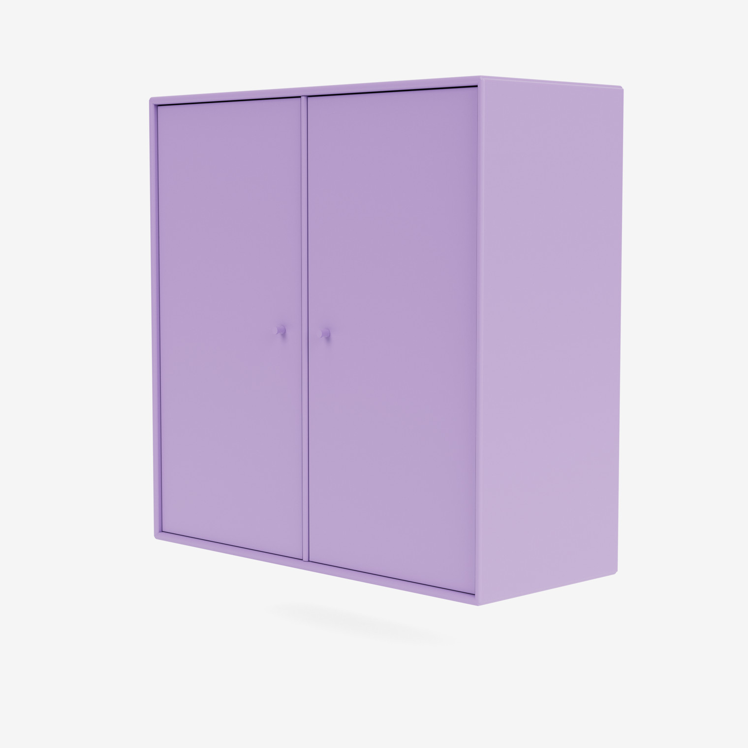 Cabinet 1118 - COVER